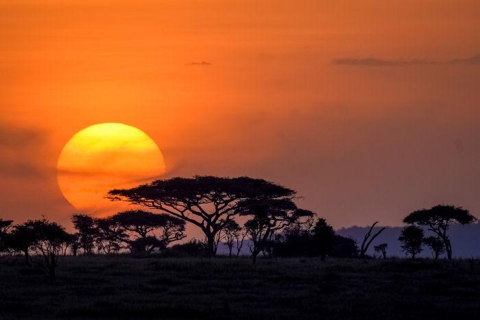 Sonnenuntergang in der Serengeti