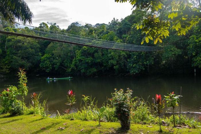 Ulu Temburong Nationalpark