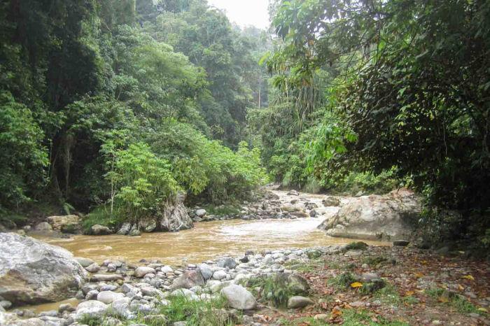 Gunur Leuser Nationalpark