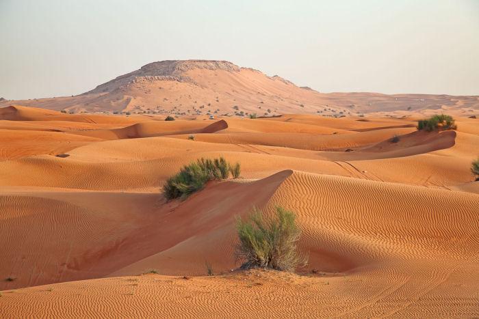 Wüste in Arabien