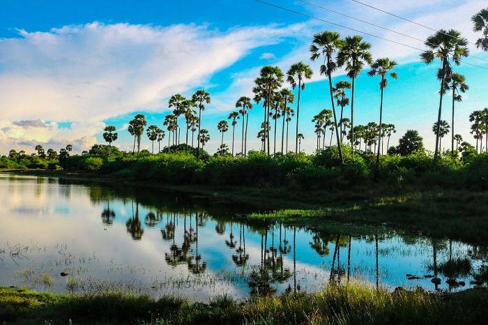 Landschaft bei Jaffna